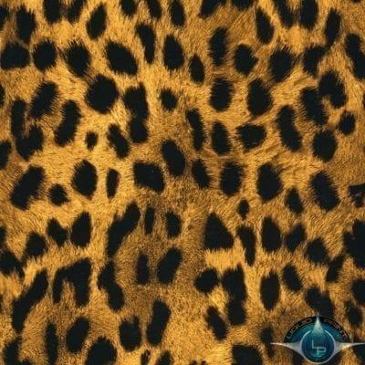 Cheetah Print Film-AP-033