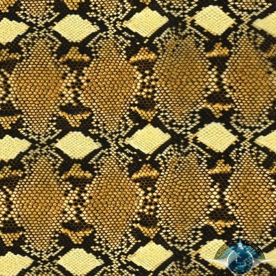 Diamond Back Snake Film-AP-938