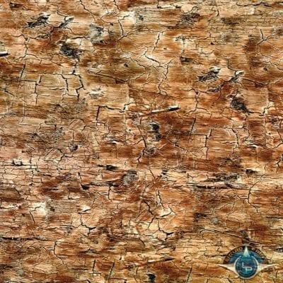Imported Wood Grain Film Gallery