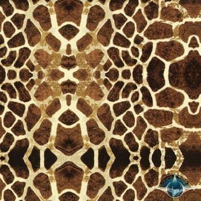Giraffe - Film-DD-954