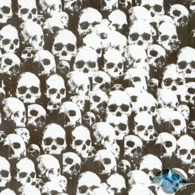 Shadow Skulls Clear Film-LL-296