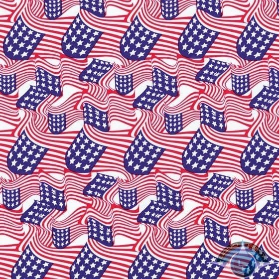 American Flags Film-LL-361